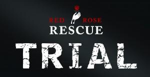 AFLC_red.rose (002)